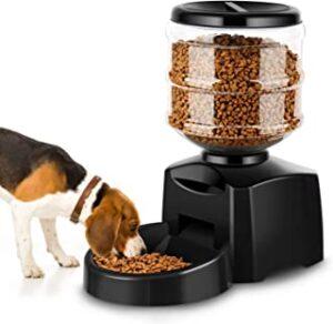 comedero automatico para perro